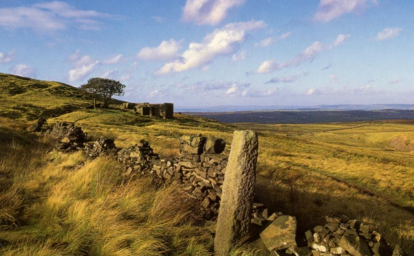 Haworth moors summer