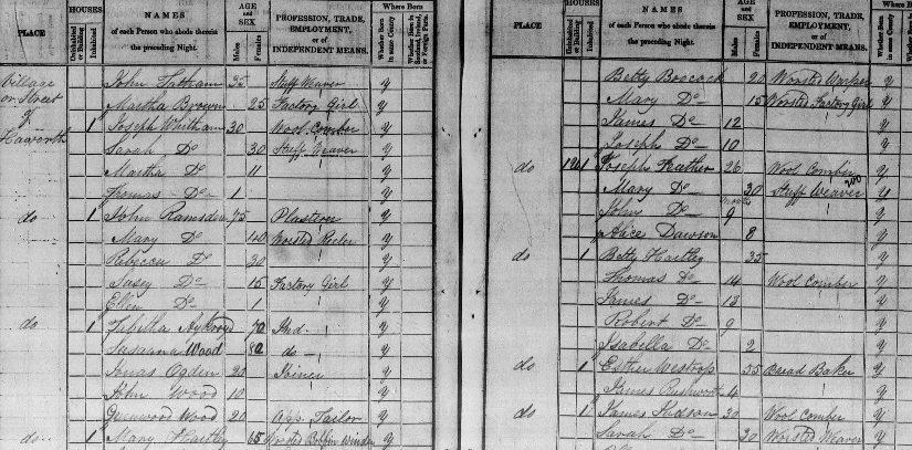 Tabby census