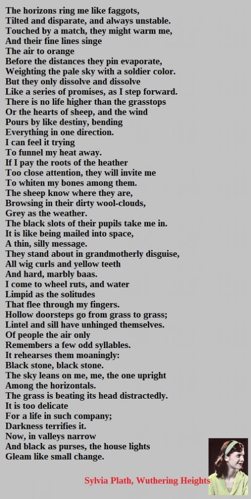 Sylvia Plath Wuthering Heights