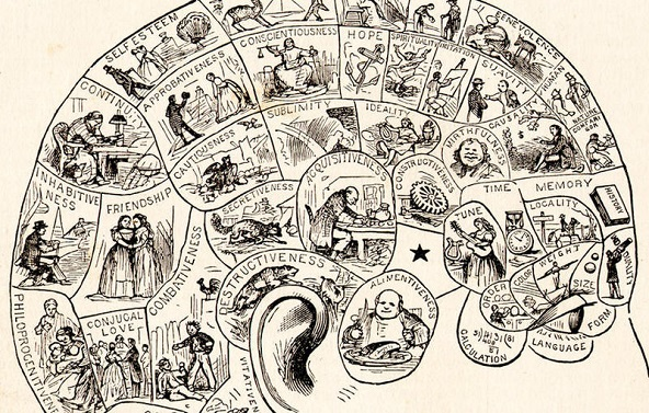 Reading The Bumps: The Brontës And Phrenology
