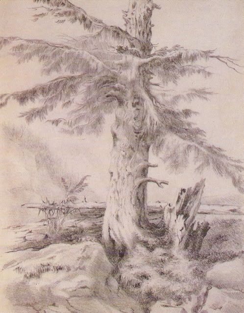 Tree by Emily Bronte