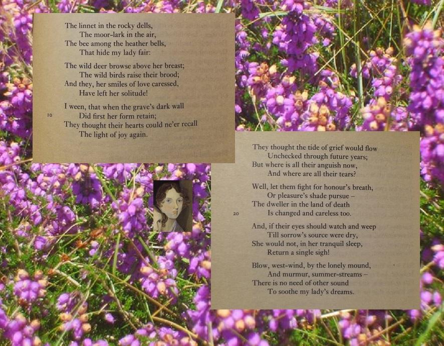 Linnet poem Emily Bronte