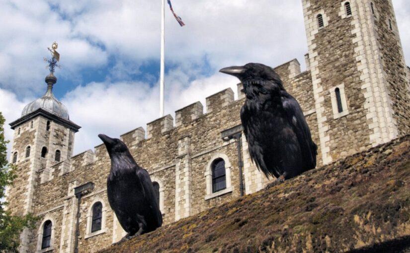 Brontës, Florence Nightingale And Raven Names
